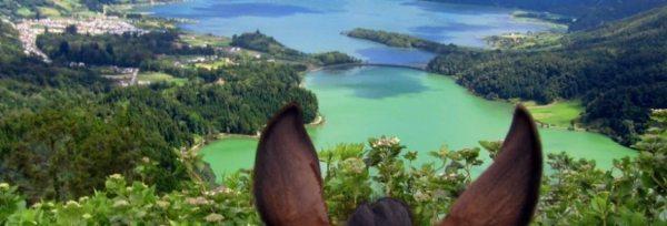 Azorerne - Den Grønne Ø teaser