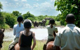 Botswana - Limpopo Dalen