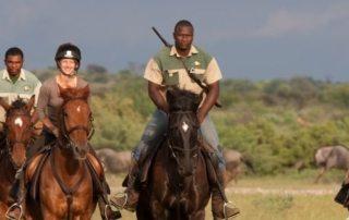 Botswana - Limpopo Dalen teaser
