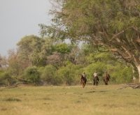 Botswana - Okavango Mobil Safari