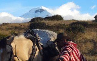 Ecuador – Andes Ridt teaser