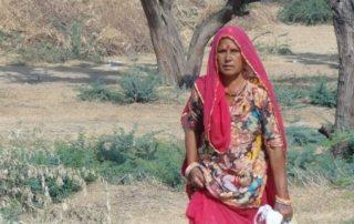 Indien - Rajasthan