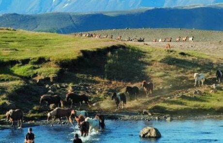 Island – Højlandsridt teaser