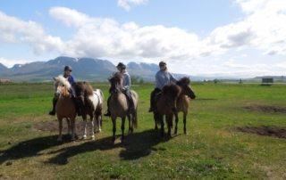 Island - Ridning i Skagafjörður