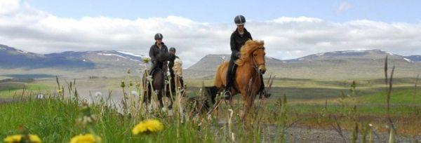 Island - Ridning i Skagafjörður teaser