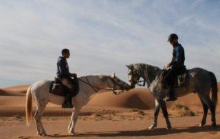 Marokko - Heste, Sandklitter & Nomader teaser