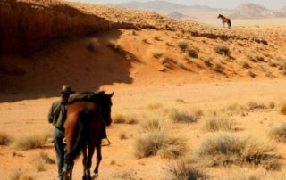 Namibia – Namib Ørkenen