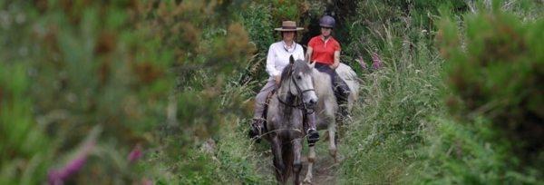 Portugal – Ulve & Vilde Heste teaser