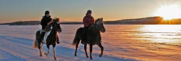 Sverige - Laplands Oplevelser teaser