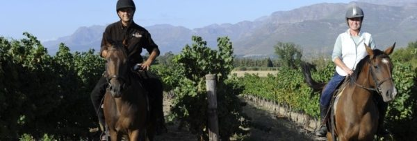 Sydafrika – Cape Winelands teaser
