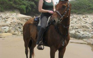 Sydafrika - Wild Coast