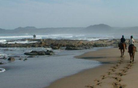 Sydafrika - Wild Coast teaser