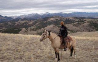 USA, Montana - Rocking Z