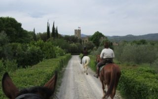 Italien – Chianti Slotte & Vinsmagning