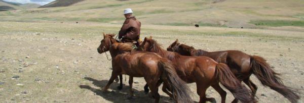 Mongoliet – Mongoliet Ekspres