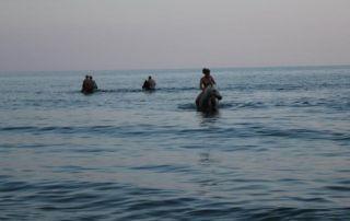 Grækenland - Kreta Sol & Ridning